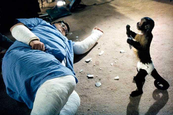 Craig Feldspar y el mono
